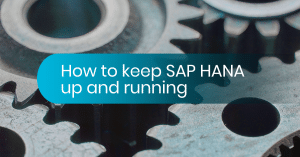SAP HANA up and running