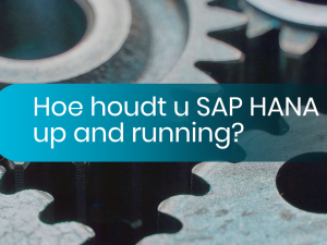 Hoe houdt u SAP HANA up and running?